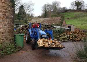 Domestic arboreal services in countryside with seasoned firewood for sale